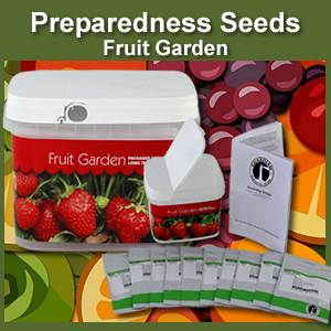 Fruit Garden Bucket of Preparedness Seeds Non-GMO (PSFG)