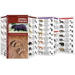 Animal Tracks - Waterproof - DuraGuide (SM9781583550724)